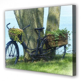 Tablou Canvas Bicicleta, Dreptunghiular, Diverse Marimi