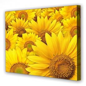 Tablou Canvas Floarea Soarelui, Dreptunghiular, Diverse Marimi