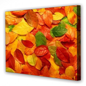 Tablou Canvas Frunze de Toamna, Dreptunghiular, Diverse Marimi
