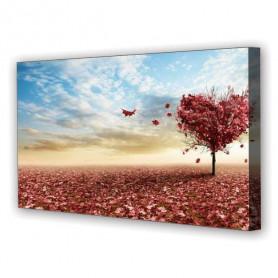 Tablou Canvas Inima Ravasita, Panoramic, Diverse Marimi