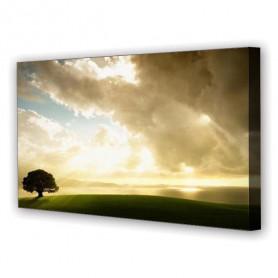 Tablou Canvas Raze de Soare, Panoramic, Diverse Marimi