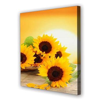 Tablou Canvas Sora Soarelui, Patrat, Diverse Marimi