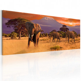 Tablou - March of african elephants 135x45 cm