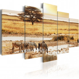 Tablou - Zebras on a savannah 100x50 cm