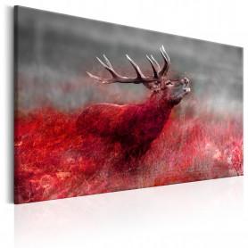 Tablou - Bloody Field 90x60 cm