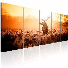 Tablou - Deer at Sunset 225x90 cm