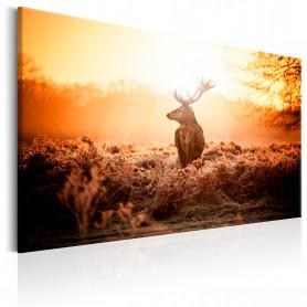 Tablou - Deer in the Sun 90x60 cm