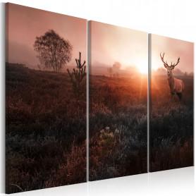 Tablou - Deer in the Sunshine I 90x60 cm