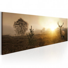 Tablou - Foggy Morning 135x45 cm