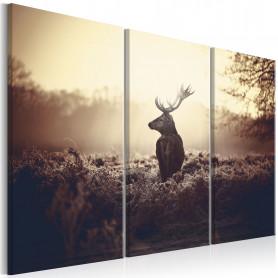 Tablou - Lurking Deer I 120x80 cm
