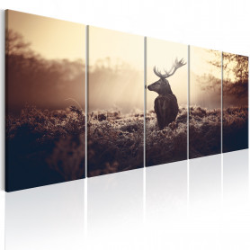 Tablou - Stag in the Wilderness 200x80 cm