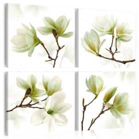 Tablou - Admiration of Magnolia 90x90 cm