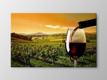 Tablou Canvas Wine Production