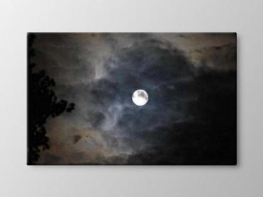 Tablou Canvas Luna Plina