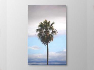 Tablou Canvas Palmier