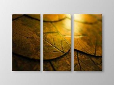 Tablou Canvas 3 Piese Frunze